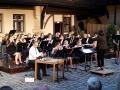 WEO_Sommerkonzert16 (3)